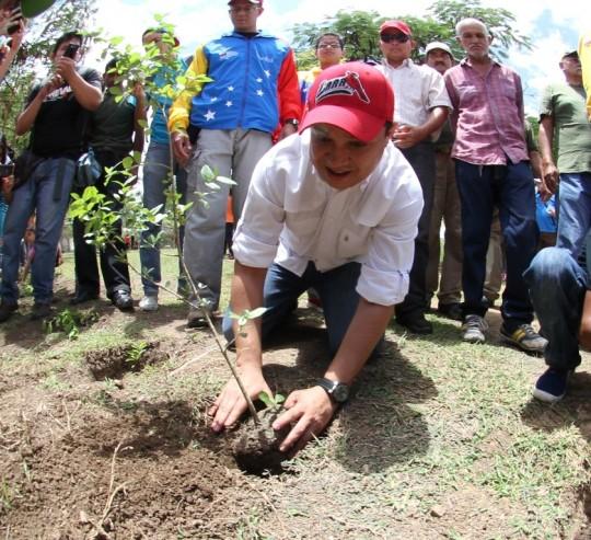 Candidato Lista PSUV en Lara Willian Gil planta un arbol(1)